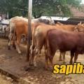 Pasar-pon-bangsri-jepara-jateng