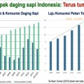Prospek-daging-sapi-indonesia-2016