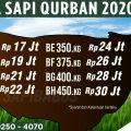 Harga Promo Sapi Qurban Sapibagus 2020